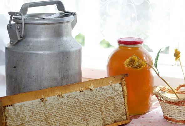 Лечимся медом, полезные и лечебные свойства меда